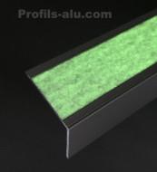 Profil Nez de Marche Luminescent
